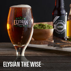 Elysian the Wise ESB