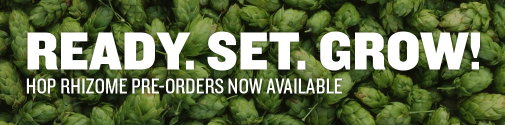 Grow Your Own Hops with Hop Rhizomes from Northern Brewer