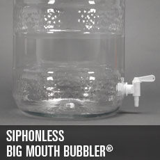Siphonless BMB