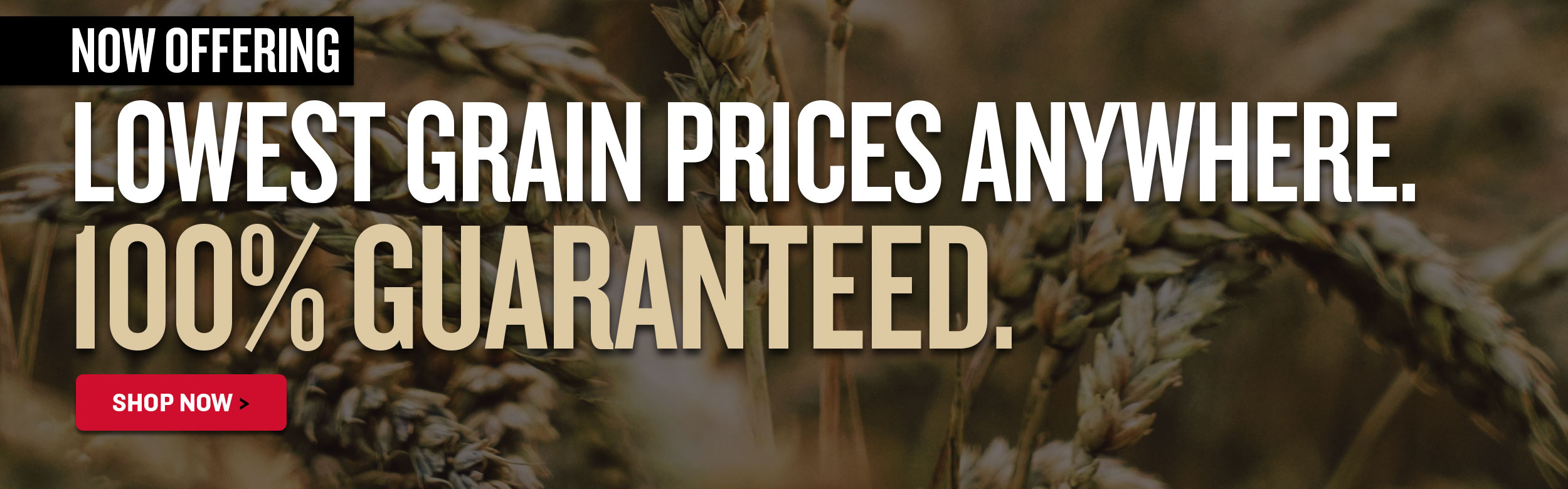 NEW Best-Price Promise on Grains!